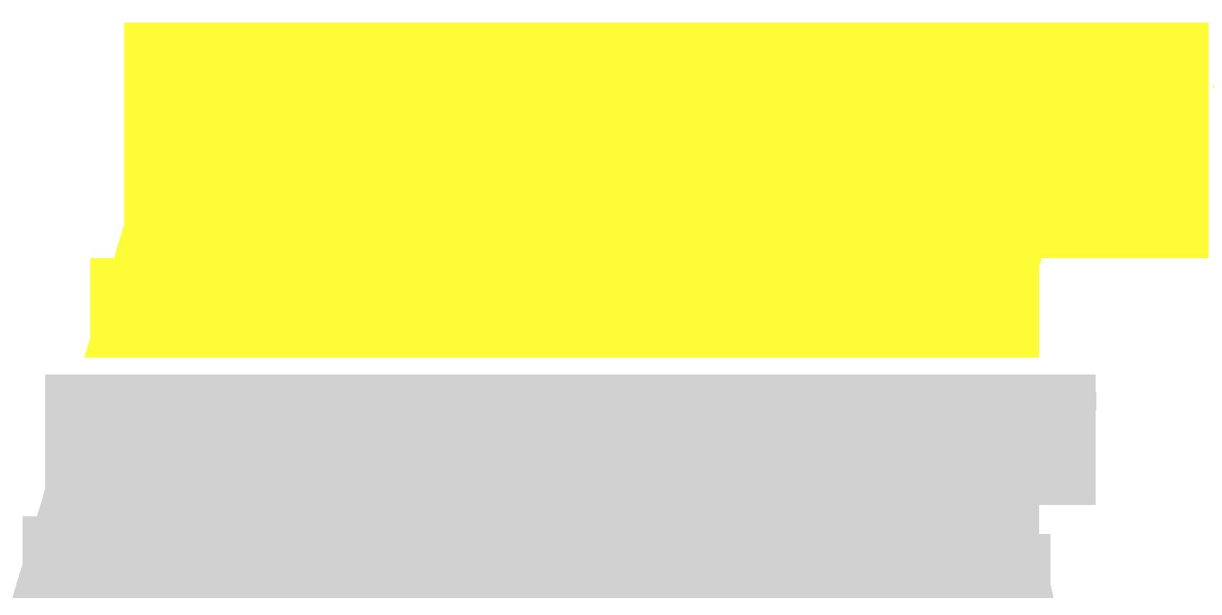 LWT Racer Logo PNG